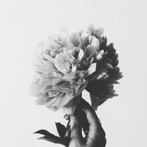 Les plus belles images pour un fond d'écran noir et blanc