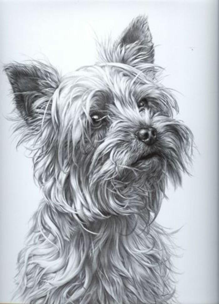 idée de dessin crayon papier blanc aux motifs animaux, modèle de dessin pro d'un petit chien avec technique ombrage