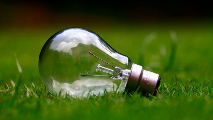 ampoule électrique sur pelouse verte