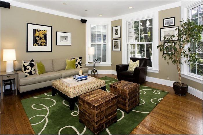 Tapis verte dans le salon taupe, couleur peinture chambre, quelle couleur pour une chambre stylée