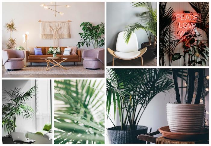 Idée quelle plante verte choisir pour dormir mieux, chambre plante intérieur, canapé cuir beige, deux palmes hautes