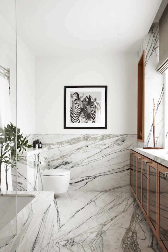 Blanc et noir peinture sur le mur de zebres, idée simple déco salle de bain stylée, aménagement petite salle de bain, douche italienne marbre