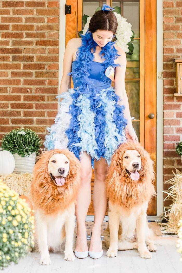 Se déguiser comme un oiseau bleu, diy robe avec plumes, chiens avec crinière artificiel pour se déguiser comme lions, deguisement de groupe, deguisement carnaval
