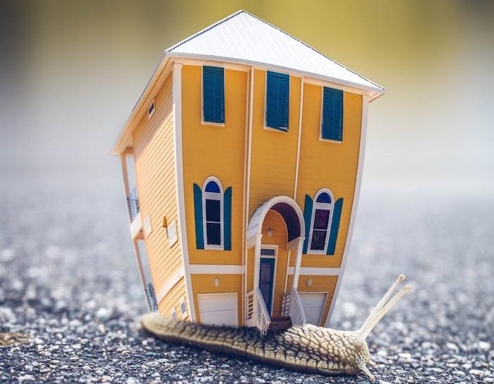 petite maison sur le dos d une limaçon, pourquoi placer son argent dans investissement locatif, avantages investir dans immobilier