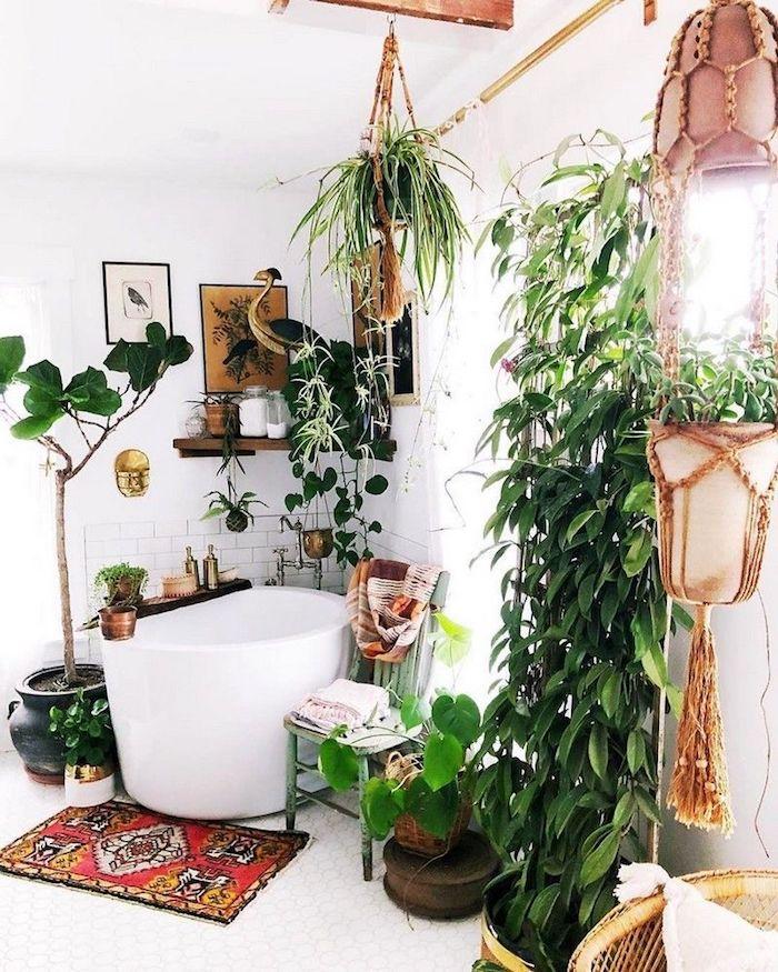 Baignoire modele de salle de bain, la plus belle décoration murale, plante verte tombante