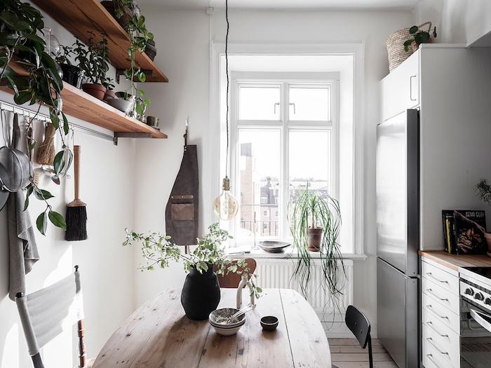 Étagère avec plantes vertes décoratives dans la cuisine moderne style scandinave, plantes dépolluantes, plante d'appartement moderne
