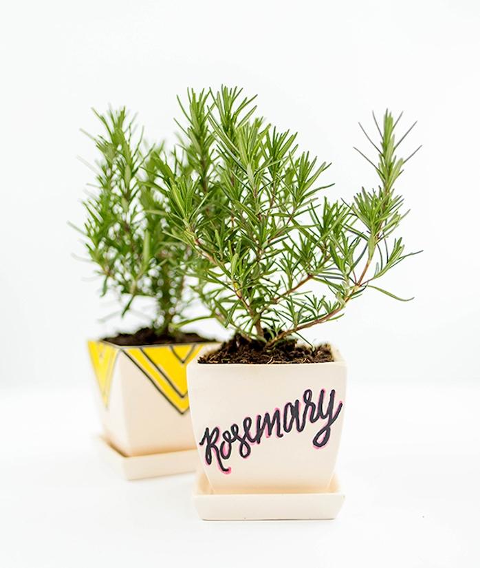 idee deco pot de fleur de bois avec inscription et des triangles jaunes avec romarin à l interieur, customiser un pot de bois