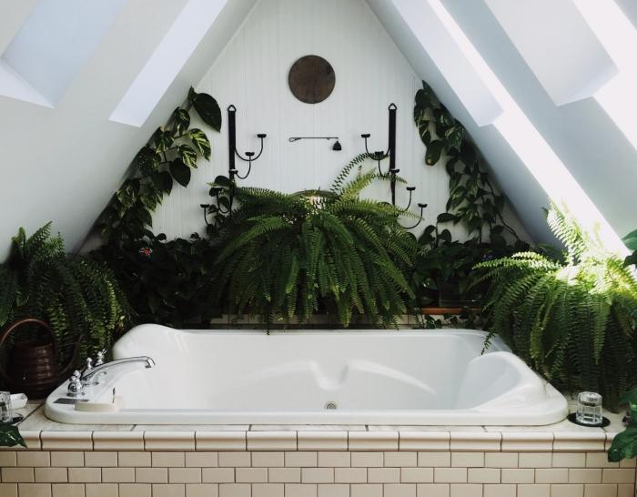 exemple comment aménager une petite salle de bain sous pente en couleur blanche avec déco plantes vertes