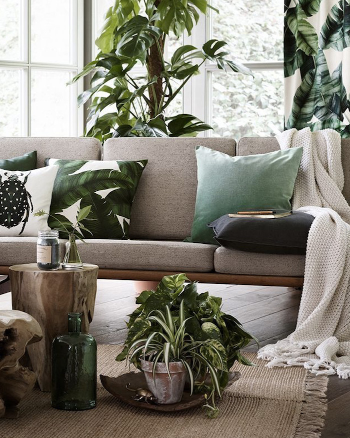 Hautes plantes vertes, canapé gris avec coussins vert et blanc feuille verte, plante chambre, idée quelle plante verte intérieur tendance
