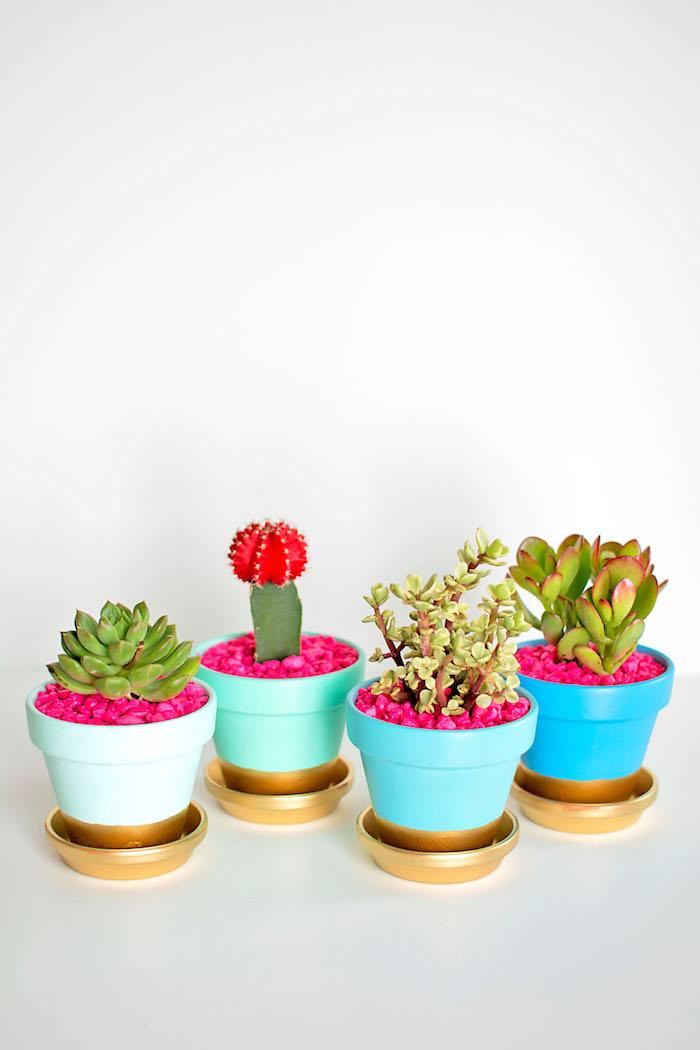 comment peindre des pots de fleur en terre de peinture bleue et vert et bas et soucoupes en or, succulents fleurs en pot