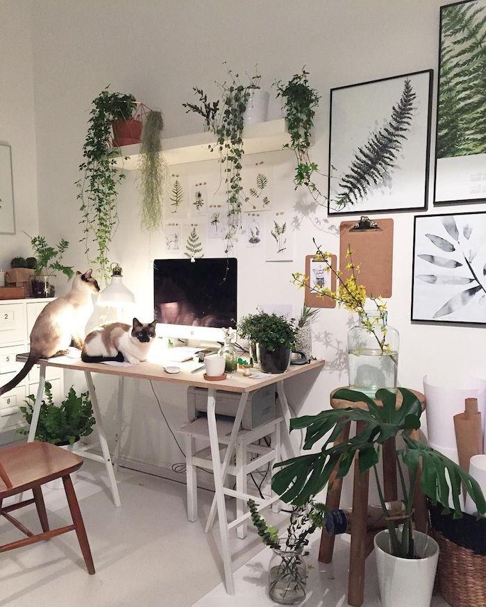 Deux chats sur le bureau avec ordinateur, bois et blanc coin bureau chambre bohème, décoration de chambre blanc et bois