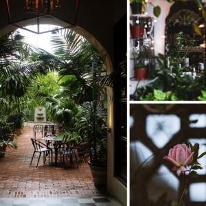 5 tendances phares pour une déco de jardin moderne en 2020