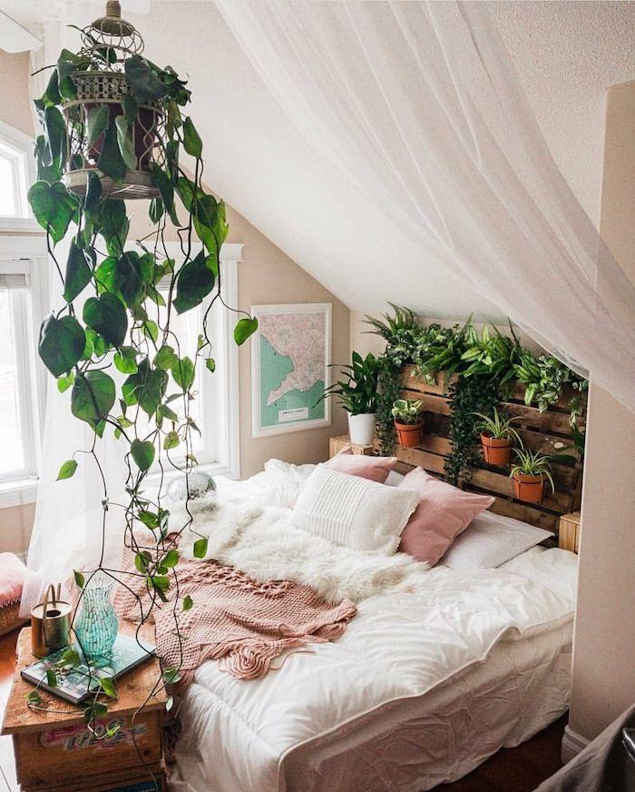Plante grimpante suspendu, verte plante interieur dépolluante, plante dans une chambre bien décorée