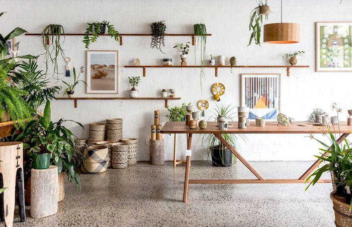 Table longue en bois, rangement plantes vertes sur étagères et tabourets, idée plante dépolluante chambre, cactus et aloe vera dans la pièce