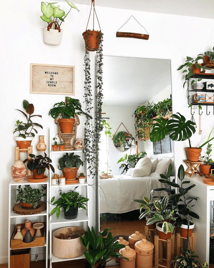 Rangement plantes original, idée chambre bohème chic deco exotique, plante interieur dépolluante, grand miroir, lit double