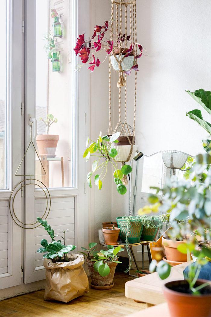Plantes tombantes, petite plante verte, porte fenetre, chambre boheme chic, plante pour chambre style bohème