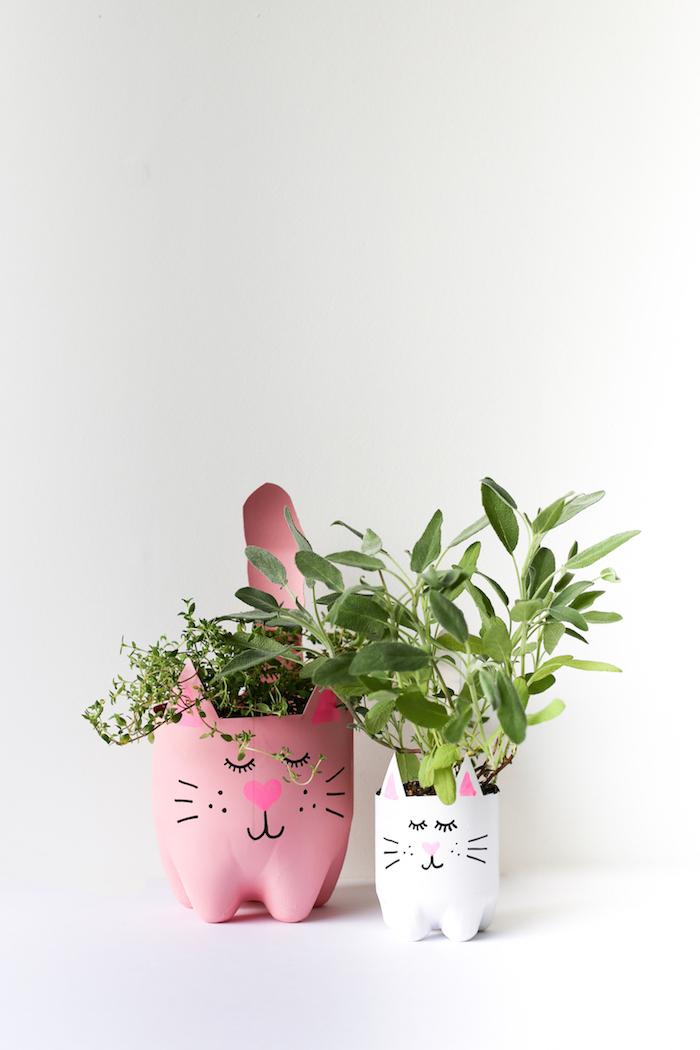 recyclage bouteilles en plastique repeintes de rose et blanc avec dessin motif chat et des plantes vertes a l interieur, idee deco jardin avec recup