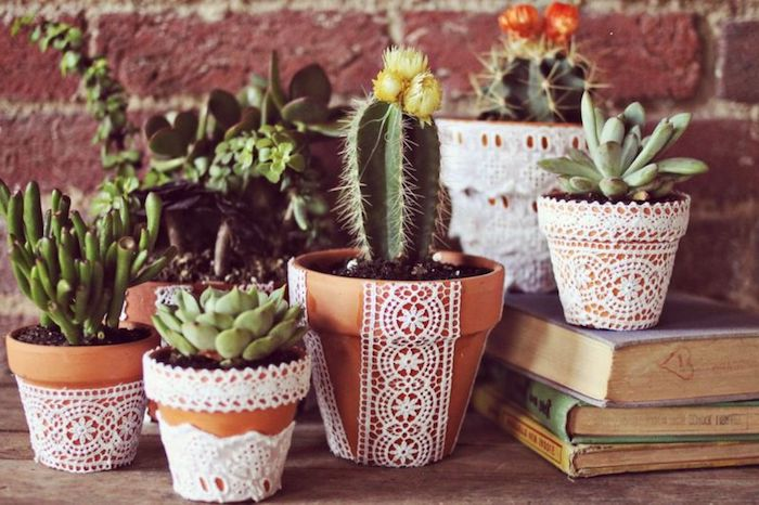 mini jardin de succulents dans pots décorés de dentelle, napperon blanc, idee deco jardin avec recup
