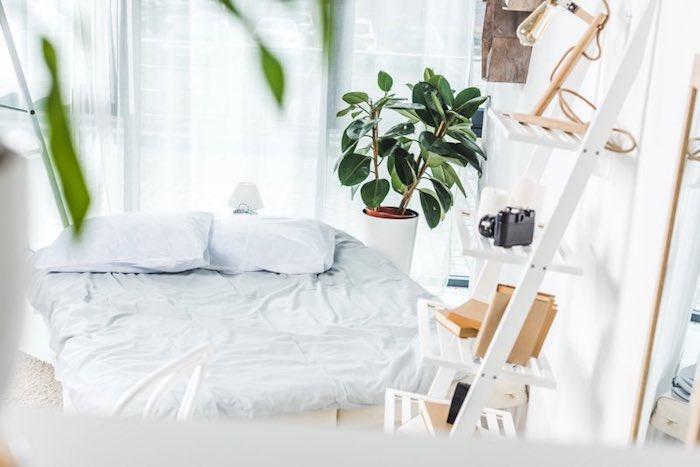 Echelle blanche de rangement plante verte intérieur, chambre à coucher quelle plante verte jolie et purifiante