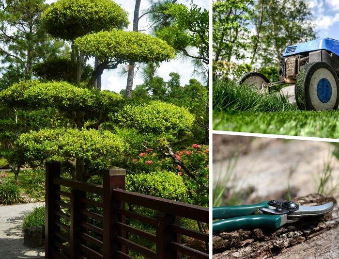 comment concevoir un jardin moderne nécessitant peu d'entretien, services et travaux de jardinage professionnels