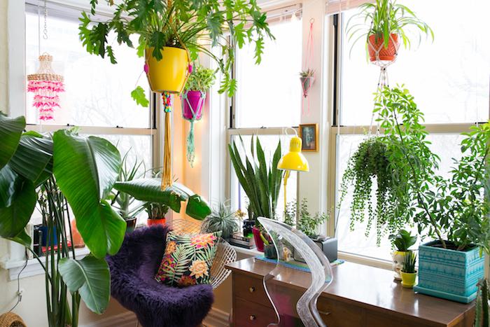 Pot jaune pour une plante verte pendante, idée plantes vertes d'appartement pour la chambre à coucher, deco jungle au coin bureau