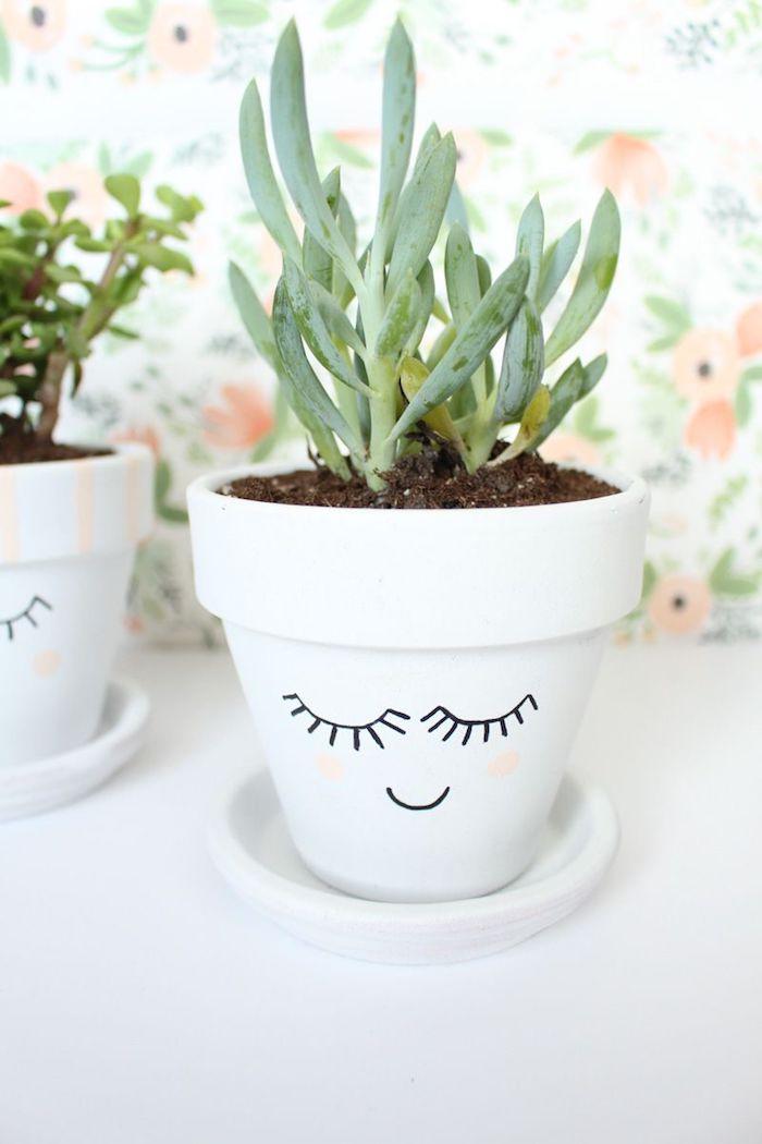bonhomme en pot de fleur, dessin bonhomme visage trait au feutre noir avec des touches rose pour amrquer les joues, plante grasse d interieur en pot