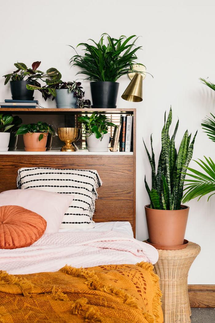 Vintage déco meubles chambre boheme, plante interieur dépolluante et moderne, plantes vertes palmiers et autres
