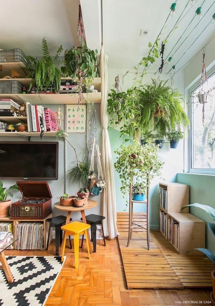 Plantes vertes sur étagères et plantes suspendus du plafond, idee plante pour chambre, plante interieur dépolluante verte