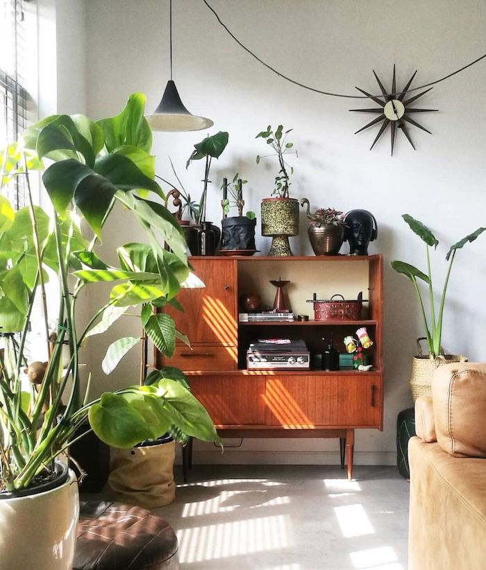 Mur blanche, chambre à coucher vintage déco, plante d'intérieur, inspiration plante d'intérieur haute déco
