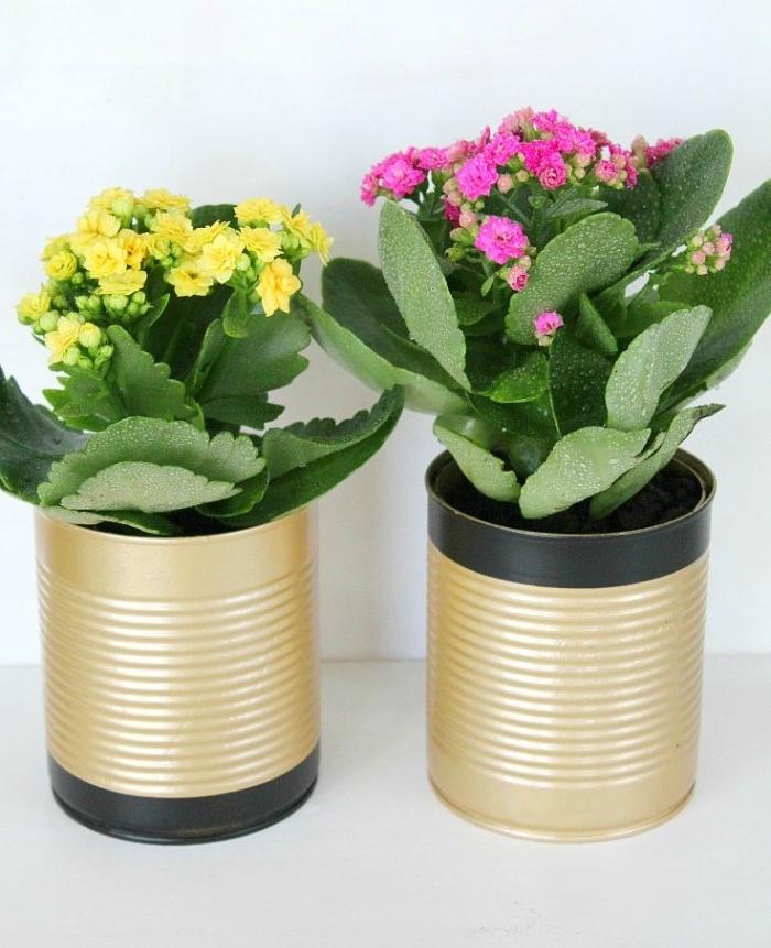recyclage boite de conserve pour y faire un cache pot recup décoré de peinture noire et or, plantes d interieur