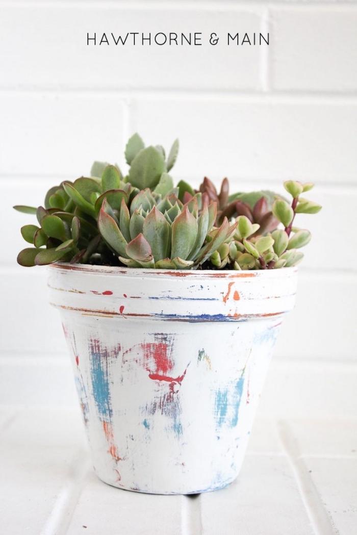 comment creer effet patine, comment patiner pot de fleur de blanc, rouge et bleu, plantes succulents d interieur