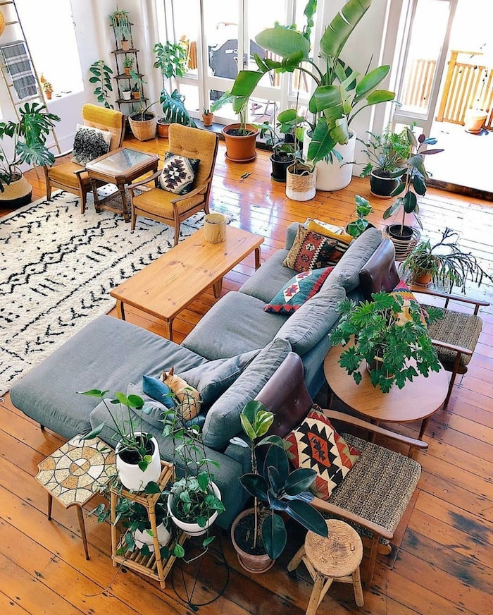Exotique déco avec plantes grandes vertes et autres plantes dépolluantes, décoration d'intérieur stylé verte