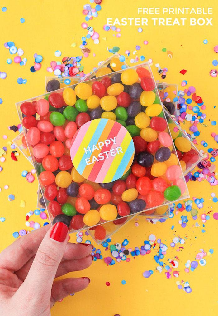 Bonbons colorés dragées bricolage de paques pour adultes, idee cadeau original pour pâques boites en plastique