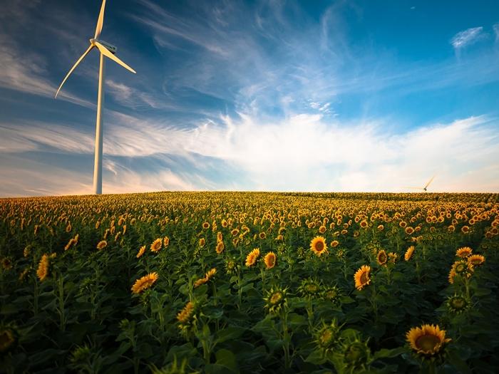 rénovation énergétique, mesures prévues dans le projet de loi Energie Climat