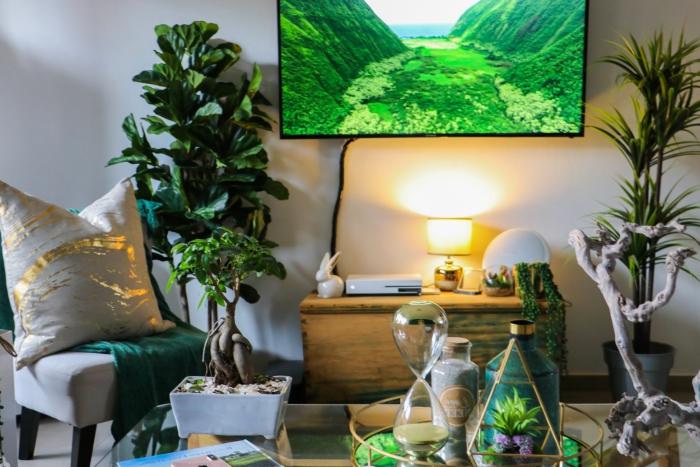 idée comment décorer un salon de style jungalow avec meubles en bois et plusieurs plantes vertes d'intérieur