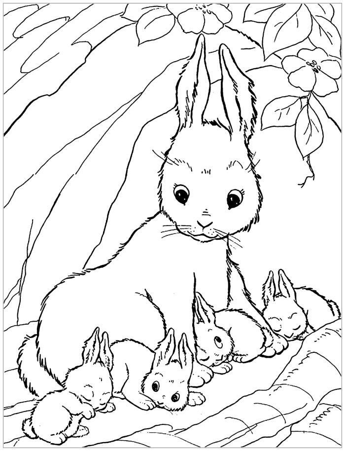 dessin de paques a imprimer, idée coloriage avec famille de lapin dans la nature, exemple dessin à colorier pour petits