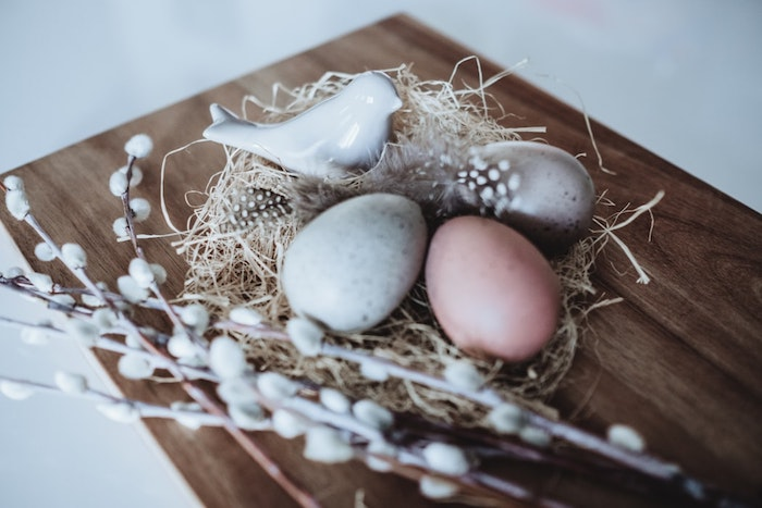 Oiseau dans son nid bricolage de paques, idee cadeau paques original pour la fete