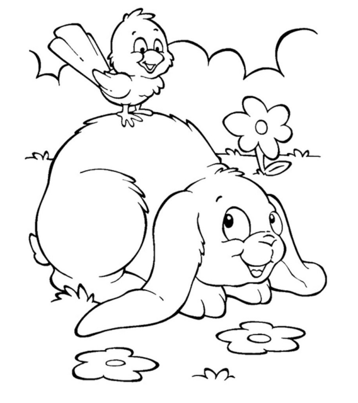 lapin de paques dessin facile pour enfants, illustration facile à imprimer avec animaux dans la nature lapin et oiseau