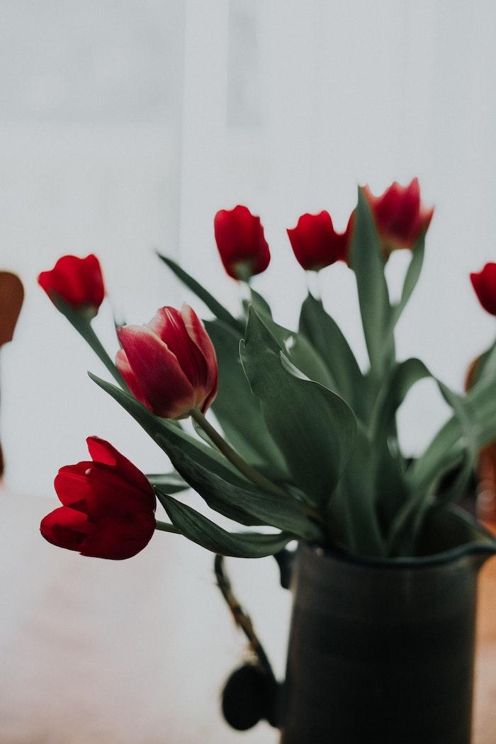 Bouquet de tulipes dans jolie vase cadeau a quelqu'un qu'on aime, idee cadeau paques simple pas cher