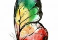 Le dessin de papillon – milles images et idées pour s'inspirer