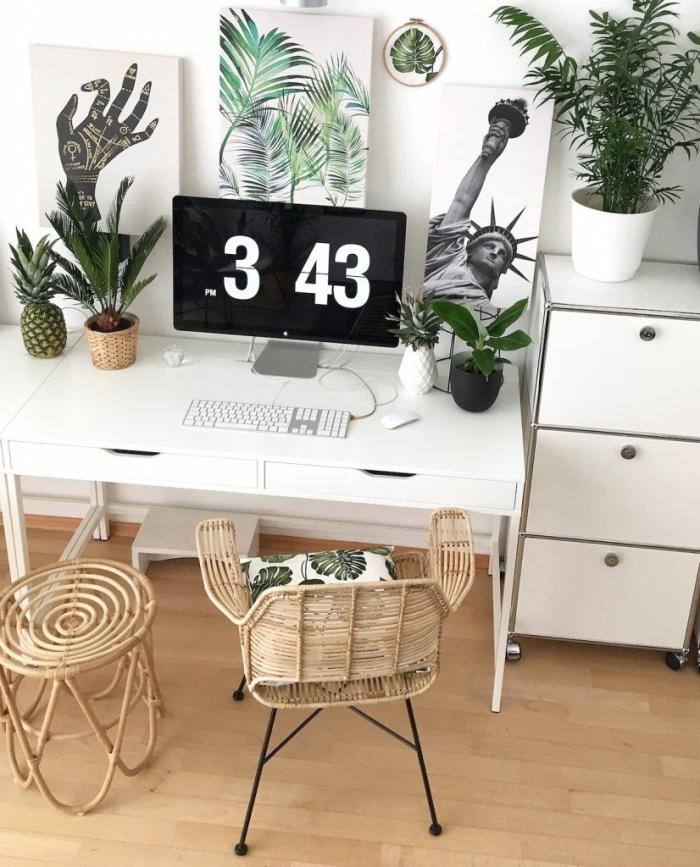 les plus belles plantes d'intérieur, décoration de style exotique avec meubles en fibre végétale et petites plantes vertes