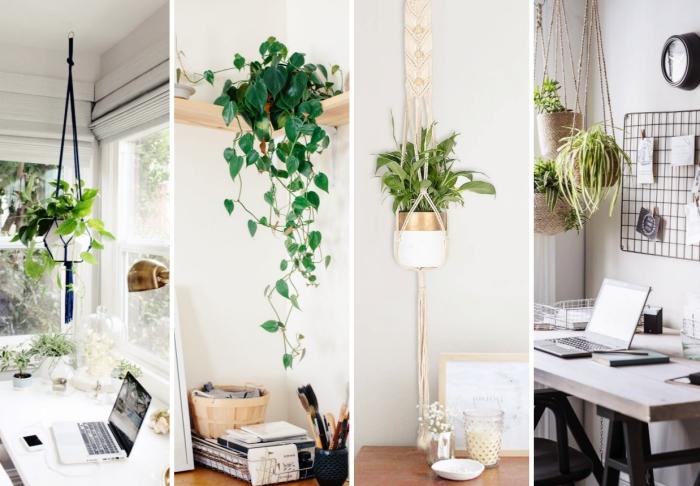 comment décorer son office à domicile avec plante verte intérieur, modèle de plante suspendue dans un bureau bohème chic