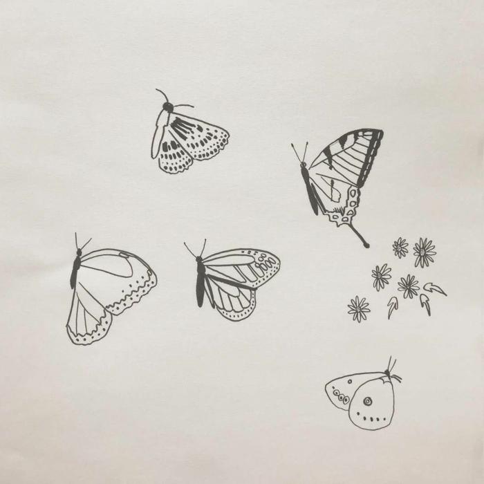 Différentes types de papillons dessin chouette, papier et crayons pour un dessin noir et blanc