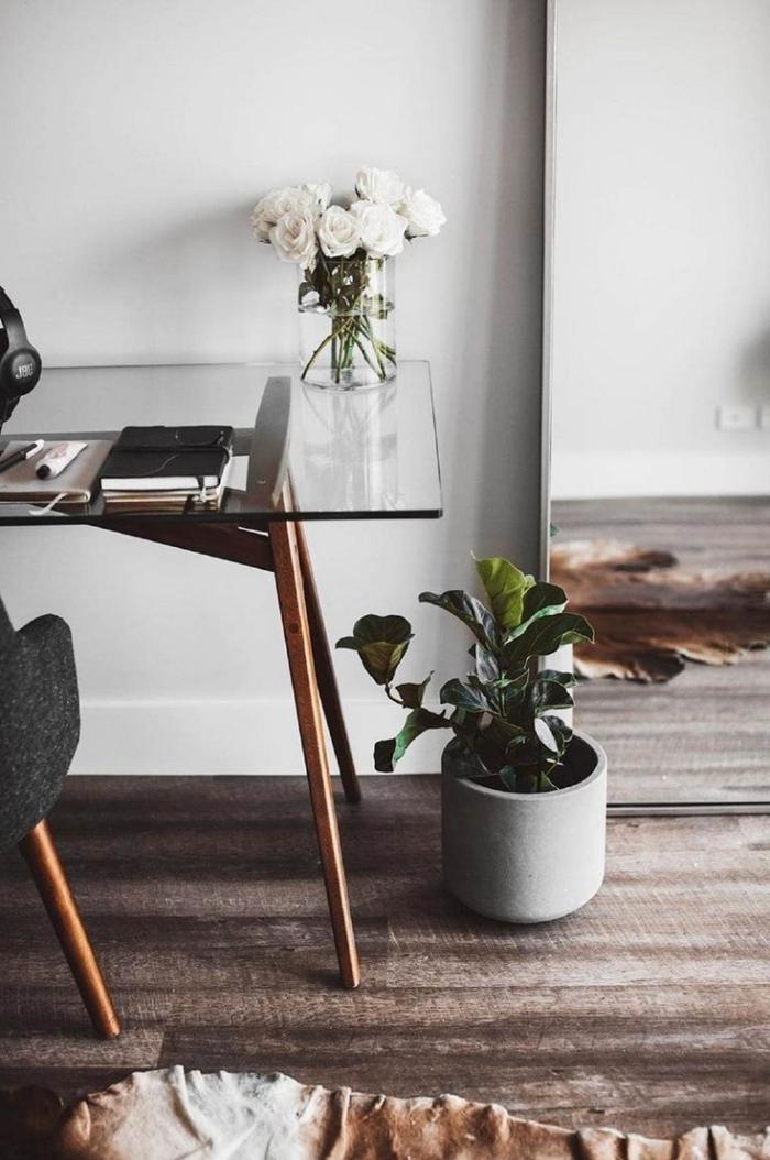 quelles plantes d'appartement choisir pour décorer son bureau dans le salon, déco home office moderne avec plantes