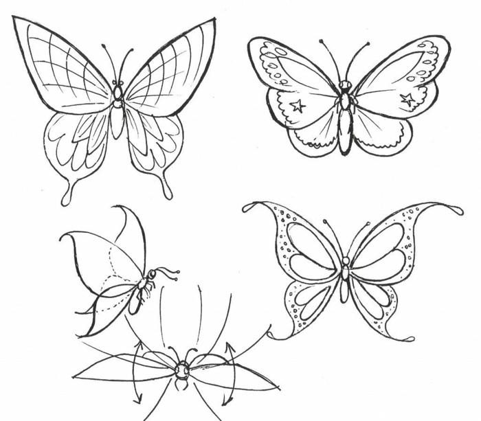 Idée simple papillon dessin a colorier, quel dessin faire aujourd'hui, simple dessins de papillons 3 types