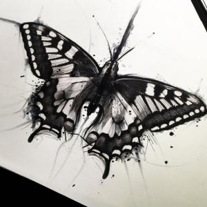 Le dessin de papillon - milles images et idées pour s'inspirer