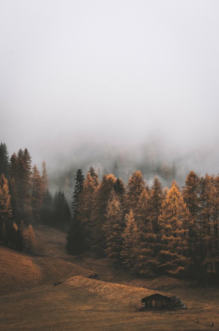 Belle photo de la montagne brouillard, les plus beau fond d'écran, idée d'arrière plan stylé et zen