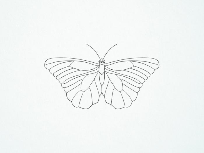 Simple papillon géométrique dessin facile a faire, dessin d'un papillon facile a reproduire
