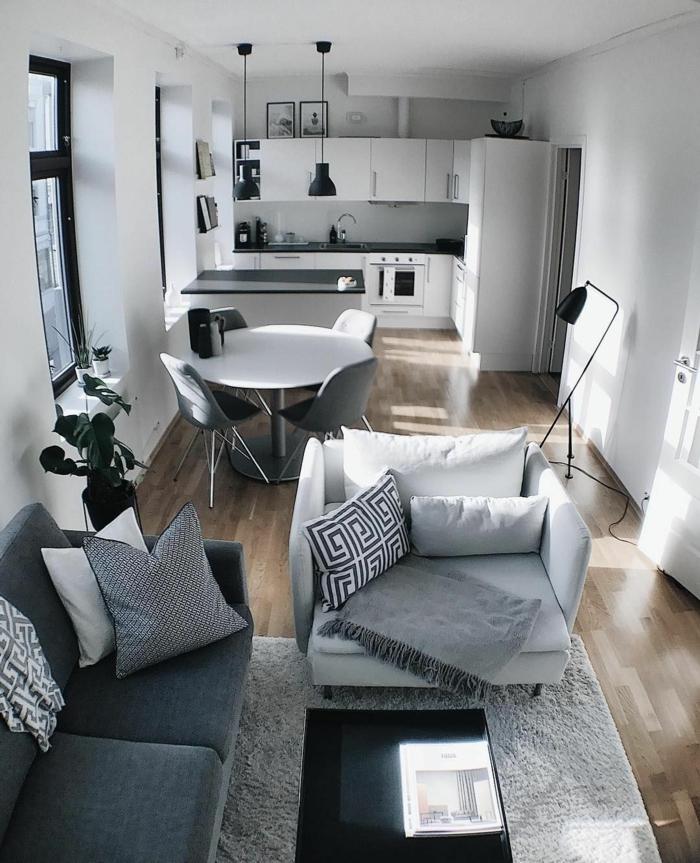 Fauteuil et canapé gris idée déco appartement, amenagement petit espace à décorer pour soi