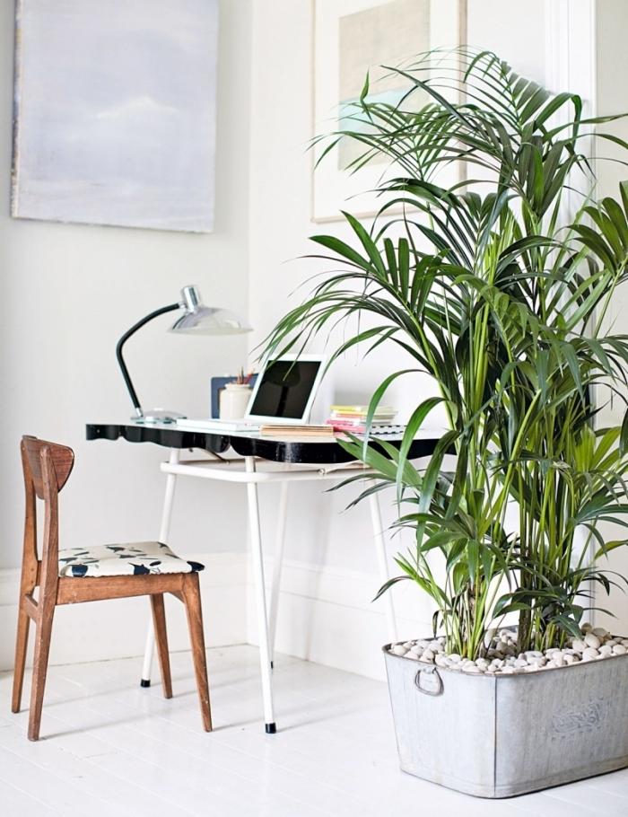 design coin de travail dans un couloir blanc avec meubles noir et blanc, idée de palmier d'intérieur pour espace de travail